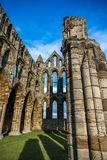 Whitby Abbey North Yorkshire Coast UK royaltyfri foto