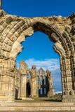 Whitby Abbey North Yorkshire Coast UK royaltyfri bild
