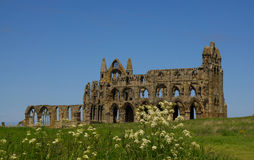 Whitby Abbey. Ruined Abbey on the hill above Whitby,England Stock Images