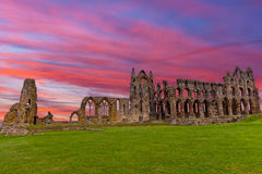 Whitby Abbey Ruins sunset in England. Whitby Abbey is a ruined Benedictine abbey overlooking the North Sea on the East Cliff above Whitby in North Yorkshire royalty free stock photos