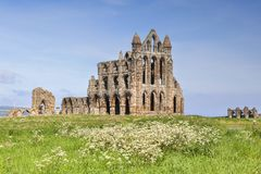 Whitby Abbey Spring Stockbild