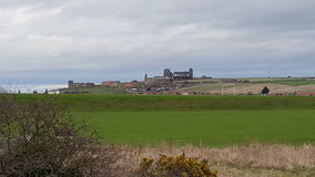 Whitby abbey and St Mary Church Royalty Free Stock Images