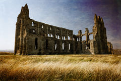Whitby Abbey. Royalty Free Stock Photos