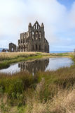 Whitby Abbey Whitby England Royaltyfri Foto