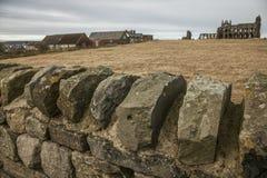 Whitby Abby - stenar och ängar Royaltyfria Foton