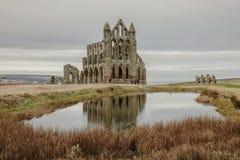 Whitby Abby Yorkshire, England - restna och reflexionen Royaltyfri Fotografi