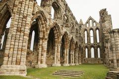 Whitby Abby, Yorkshire - los restos y los prados Fotos de archivo libres de regalías