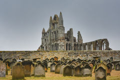 Whitby abey and cemetery Royalty Free Stock Images