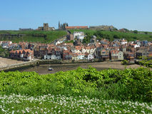 Whitby Ansicht Stockfoto