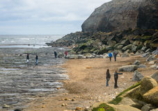 Whitby families beachcombing Stock Images