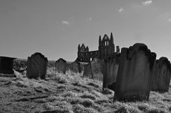 Whitby graves Royalty Free Stock Photos