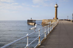 Whitby. The harbour and lighthouses of Whitby Stock Photography