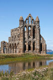 WHITBY NORR YORKSHIRE/UK - AUGUSTI 22: Whitby Abbey i norr Y Royaltyfria Foton
