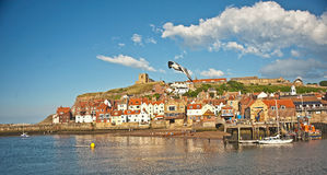Whitby in Summer. Whitby, a well known holiday resort on the Yorkshire coast viewed across the harbor towards Saint Marys Church Royalty Free Stock Photos