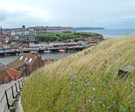 Whitby town and harbour from above. Whitby town and harbour from Saint Mary's Church and the abbey Royalty Free Stock Photos
