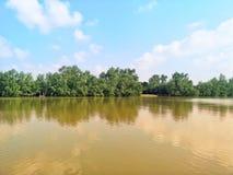 White†‹clouds†‹het drijven in†‹the†‹sky†‹boven struiken are†‹shade†‹D rivier stock afbeeldingen