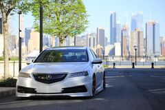 White Acura Sedan on Gray Asphalt Road Near Green Tree at Daytime Stock Images