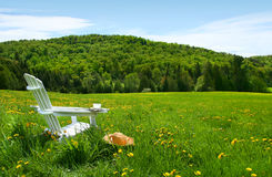 White adirondack chair in a field of tall grass Stock Photos