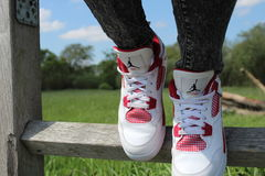 White Air Jordan 4 on Brown Wooden Fence Royalty Free Stock Photo