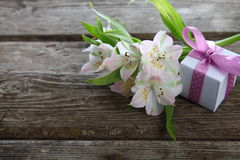 White alstroemeria and gift Stock Photography