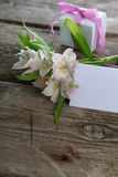 White alstroemeria and gifts Stock Photo