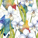 White amaryllis. Floral botanical flower. Seamless background pattern. Fabric wallpaper print texture. Aquarelle wildflower for background, texture, wrapper stock illustration