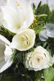 White amaryllis and rose Royalty Free Stock Image