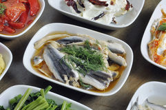 White anchovy Stock Image