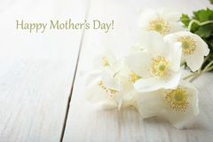 White anemone flower. Bouquet white anemone flower on wooden table. Concept mother`s day. Copy space stock photography