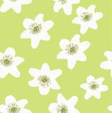 White anemones floral background seamless Stock Photos