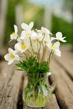 White anemones in glass jar on old wooden bench Stock Photos