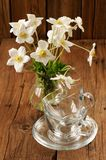 White anemones and two glass cups and saucers on wooden backgrou Royalty Free Stock Photography
