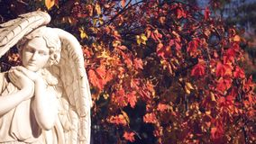 White angel on the background of autumn foliage stock video footage