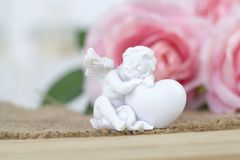 White angel. Beautiful pink flowers on white desk. stock photography