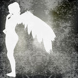 White Angel Royalty Free Stock Images