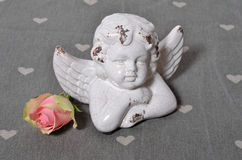 A white angel rose Royalty Free Stock Image