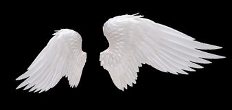 White angel wing. Isolated on black Royalty Free Stock Photos