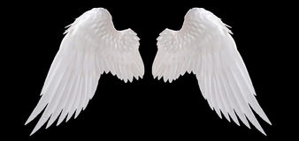 White angel wing. Isolated on black Royalty Free Stock Image