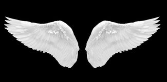 White angel wing isolated. On black background Royalty Free Stock Images