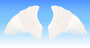 White angel wings Stock Photography