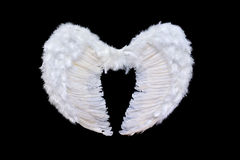 White angel wings stock image