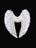 White angel wings. On black background Stock Images