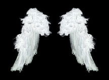 White angel wings Stock Photo