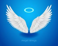 White angel wings and shining nimbus, realistic feathers. White angel wings and shining nimbus, halo, realistic feathers, vector illustration isolated on blue royalty free illustration