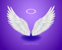 White angel wings and shining nimbus, realistic feathers. White angel wings and shining nimbus, halo, realistic feathers, vector illustration isolated on purple vector illustration