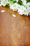 White apple flower on a wooden board Royalty Free Stock Images