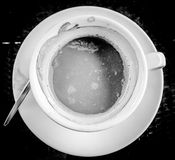 White arabica cup of coffe in the morning Royalty Free Stock Images