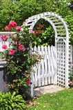 White arbor in a garden. White arbor with red blooming roses in a garden Royalty Free Stock Image