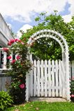 White arbor in a garden. White arbor with red blooming roses in a garden Stock Photography