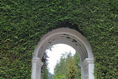 White Arch Entry Through a Thick Green Hedge Royalty Free Stock Photo
